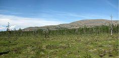 Sokosti – Urho Kekkosen kansallispuiston korkein huippu nousee 718m merenpinnan yläpuolelle.