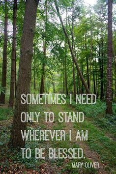 Poetry Quotes, Book Quotes, Words Quotes, Reading Quotes, Quotes Quotes, Nature Words, Nature Quotes, Motivational Words, Inspirational Quotes