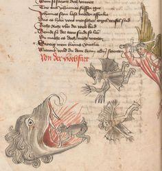 Die Pluemen der Tugent, Vintler, Hans, -1419 1. Hälfte 15. Jhdt.  Cod. Ser. n. 12819 Han  Folio 234
