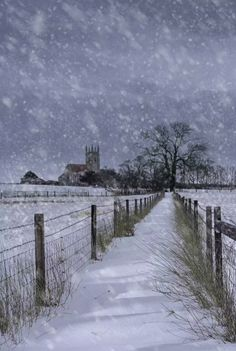 🇬🇧 Snowy path to St Andrews church (Sempringham, Lincolnshire, England) by Alistair Nicols ❄️cr. Winter Love, Winter Snow, Cozy Winter, Winter Magic, Winter Scenery, Snow Scenes, Winter Pictures, Winter Beauty, Winter Photography