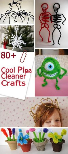 Cool Pipe Cleaner Crafts!