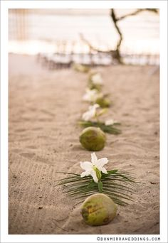 Simple, natural & beautiful use of lilies, coconuts & palms to outline the ceremony aisle.