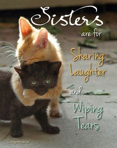 100 Sister Quotes Soul Sister Quotes, Sister Poems, Sister Quotes Funny, Sister Birthday Quotes, Funny Quotes, Beautiful Sister Quotes, Sister Quotes Images, Quotes Quotes, Sister Sayings