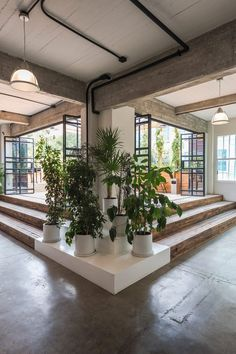 Inside the co-working building, which is called Guateque, the existing structure is left exposed and complemented with custom-made furnishings, including wooden desks and bright rugs, and lots of greenery.