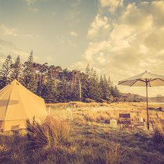 Wildernest Glamping New Zealand