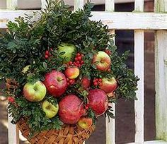 colonial williamsburg wreath.  My most favorite festive wreaths of all use fruit/bulbs - apples pomegranates, pineapples, garlic, artichokes, etc.  Natural beauty, so colorful and festive.