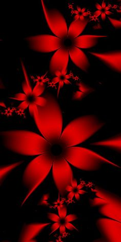 Red Flowers by EsmeraldEyes on DeviantArt - Handy Hintergrund Red And Black Wallpaper, Black Phone Wallpaper, Butterfly Wallpaper, Cellphone Wallpaper, Colorful Wallpaper, Galaxy Wallpaper, Wallpaper Desktop, Disney Wallpaper, Phone Wallpapers