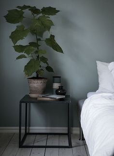 plants in the bedroom... Blue-grey bedroom - via Coco Lapine Design