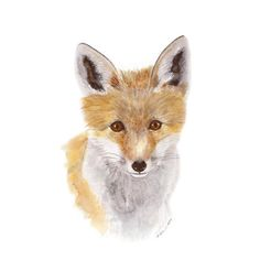 Fox Art Nursery Art Fox Childrens Wall Art by TinyToesDesign