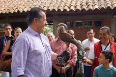 Risaralda será epicentro internacional de avistamiento de aves en el marco de sus 50 años