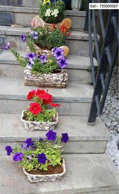 Pick from a wide variety. Contact - 7354000067 9893400067 #Decor #HomeDecor #IndoorPlants #SanasPlanters  #CityShorIndore