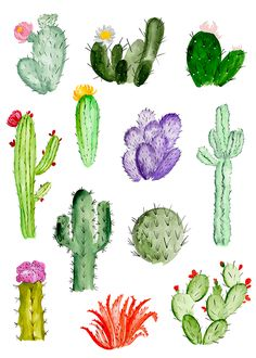 187 Best Cacti Drawing Ideas Images In 2019 Paintings Easy