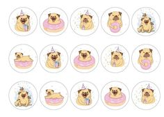 Edible cupcake toppers with cute birthday pug hand drawn images - rice paper or icing. Perfect cake decoration for a girls birthday party with a pug theme. All products are 100% edible and easy to use. Suitable for use as cocktail toppers and ice cream decs. Next day delivery available - buy now!