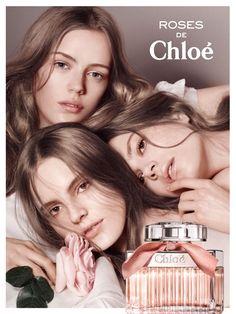 Chloé -  Roses de Chloé