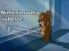 ** Pe mine nu ma iubeste nimeni. Eu nu pot trai fara iubire!  # http://talosdarius.ro/pe-mine-nimeni-nu-ma-iubeste-eu-nu-pot-trai-fara-iubire/