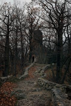 There is a forest in Southern Poland, with some spooky ruins situated on a hill. It's hard to find, it's quite hard to get there. Here it is!
