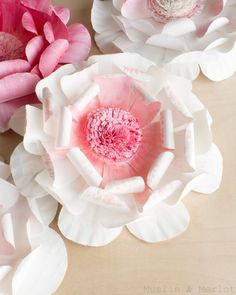 Believe it or not these beautiful flowers are made from Paper Plates!!