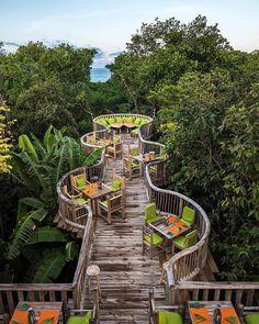 In the tree house - Daily Pratical Landscape Architecture, Landscape Design, Garden Design, Restaurant Design, Jungle Resort, Jungle House, Tree House Designs, Bamboo House, Cafe Design