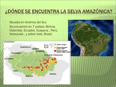 Resultado de imagen para selva amazonica colombiana Anaconda, Peru Travel, Ideas Para, Map, World, Animals, The World, Preschool Jungle, Preschool Classroom
