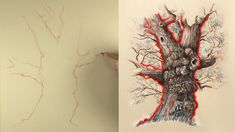 Drawing the trunk of the tree