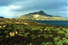 Kerguelen islands.