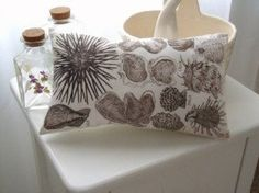 Cover the shells with the fabric paint and then use