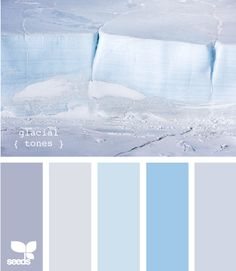 glacial tones @Stephanie Close Groff i love white, pale blue and silver for winter weddings!
