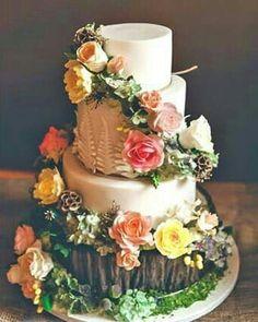 Cake 🎂
