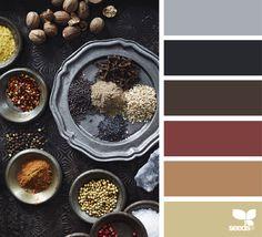 Design Seeds + Color Atlas by Archroma® Paint Color Schemes, Colour Pallette, Color Combos, Design Seeds, World Of Color, Color Stories, Color Swatches, Season Colors, Color Inspiration