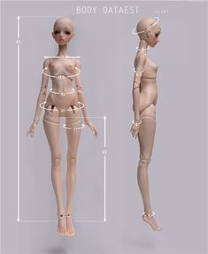 Thisn is the MOST beautiful MSD sculpt ever, please, everybody go buy her, so they stay in business! :) 身体尺寸.jpg