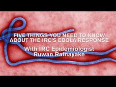 Five things you need to know about the IRC's Ebola response | International Rescue Committee (IRC)