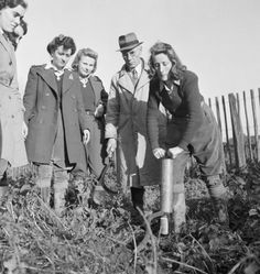 Land Girl Audrey Willis pumps rat poison into a hole in the ground with a gassing pump, supervised by an instructor and her Land Army colleagues, as part of her training on a farm in Sussex. 1942