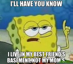 I'LL HAVE YOU KNOW I LIVE IN MY BEST FRIEND'S BASEMENT, NOT MY MOM'S. funny meme