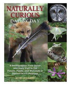 Naturally Curious Day by Day: Photographic Field Guide Paperback