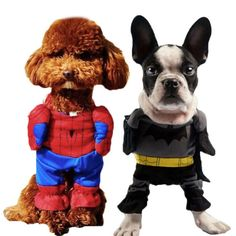 sc 1 st  Pinterest & Dog Costumes For Cats | Fisherman | Pinterest | Dog Pet dogs and Cat