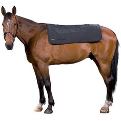 Dark Horse Tack is proud to offer... The Back Warmer has a thin filling plus a velcro strip sewn along the length of the center back. If you wish to use your regular rug over the Back Warmer, you can