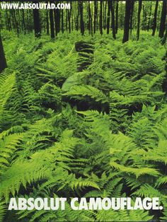 23 Best Absolut Ad's Absolut Vodka, Clever Advertising, Advertising Campaign, Best Ads, Bottle Art, Camouflage, Graphic Design, Nature, Fern