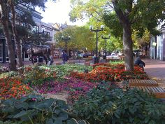 Downtown Boulder, CO by bizstone, via Flickr