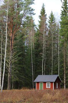 Litet hus vid skogens slut...