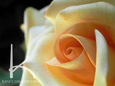 Kara's Couture Cakes - Sugar Rose Video Tutorial - Best sugar rose tutorial - watch second part dusting Sugar Paste Flowers, Icing Flowers, Fondant Flowers, Fondant Rose, Fondant Cakes, Fondant Flower Tutorial, Rose Tutorial, Cake Decorating Techniques, Cake Decorating Tutorials