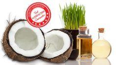 Vyzkoušejte blahodárné účinky kokosového oleje. Je vhodný nejen na vaření. Skvělé ošetří též vaši pokožku i vlasy. Univerzální domácí pomocník! Coconut, Fruit, Food, Essen, Meals, Yemek, Eten