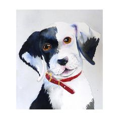 Dog Art Cyber Monday etsy Painting Watercolor Print by LaBerge Watercolor Animals, Watercolor Print, Watercolor Paintings, Illustration Art Drawing, Nature Illustration, Illustrations, Black And White Dog, White Dogs, Dog Artist