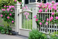 Gorgeous and Simple Rose Garden Ideas (With Landscape and Fence Ideas) Garden Shrubs, Garden Fencing, Front Yard Fence, Fence Gate, Wooden Gates, Simple Rose, Fence Design, Front Yard Landscaping, Landscaping Ideas
