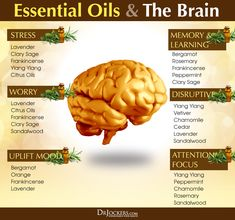 Alzheimer's Natural Treatment: Are Essential Oils an Effective Option? Treat Alzheimer's Naturally with Essential Oils Young Living Oils, Young Living Essential Oils, Doterra Essential Oils, Essential Oil Blends, Essential Oils For Memory, Essential Oils For Depression, Orange Essential Oil, Foods For Depression, Plant Therapy Essential Oils