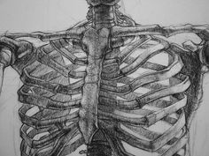 Within your ribs my heart longed to abide