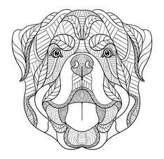 Rottweiler Hund Kritzeln Stilisierten Kopf Hand Gezeichnet Muster Zen Kunst Ornate Vector Schwarz Weiss Darstellung Auf Weissem Hintergrund Drucken Fur T S Zen Kunst Hande Zeichnen Kunstproduktion