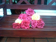 Rosas en un banco