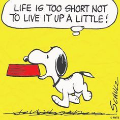 Life is too short not to live it up a little!