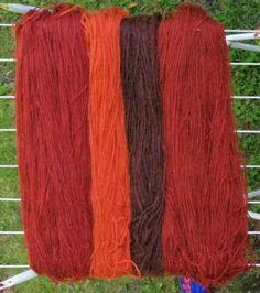 Punaista ja oranssia verihelttaseitikistä – Rannantaikaa väki ry:n kotisivut Tie Dye, Villa, Dreadlocks, Colours, Long Hair Styles, Garden, Diy, Beauty, Zero Waste