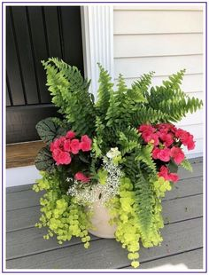 Ideas from 47 planters from my neighborhood 24 Container gardening flowers, Container flowers, Porch Outdoor Flowers, Outdoor Planters, Garden Planters, Fern Planters, Potted Ferns, Garden Stools, Potted Flowers, Plant Pots, Container Flowers